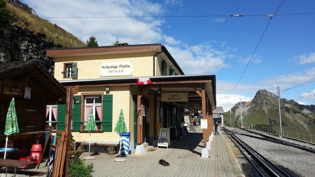 Железная дорога Щюниге Платте. Конечная станция.