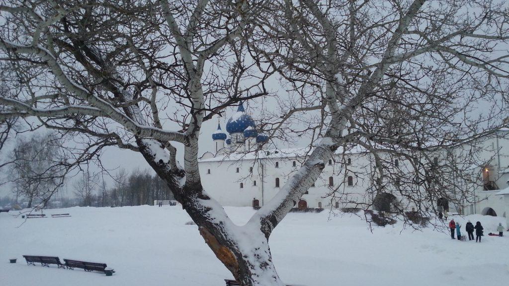Суздальский Кремль зимой
