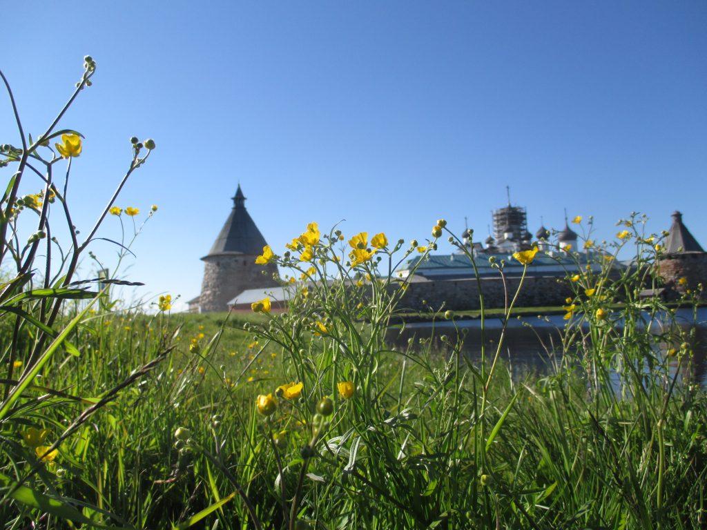 Соловецкий монастырь. Летний пейзаж.