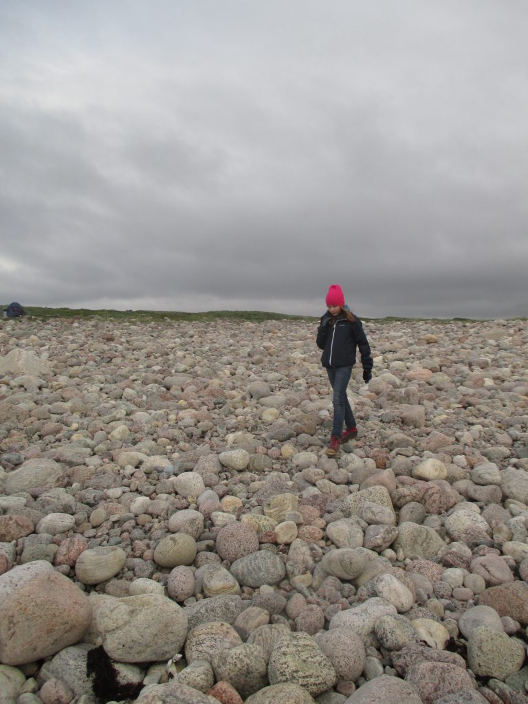 Каменный пляж Баренцева моря