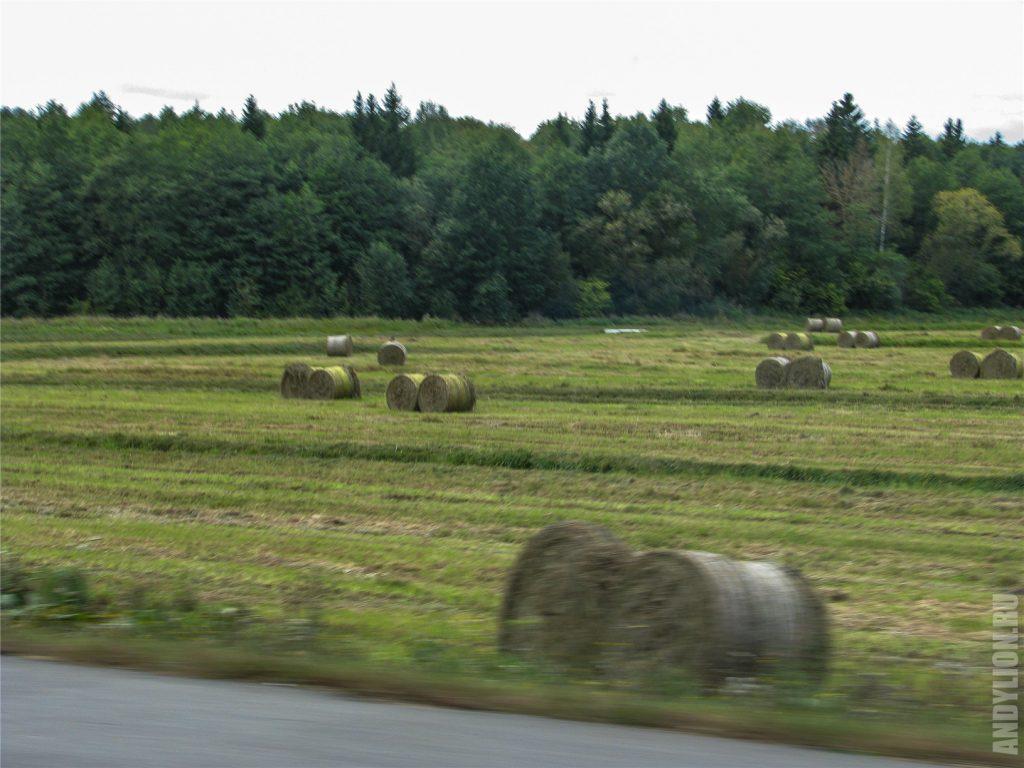 Стоги сена на белорусской земле