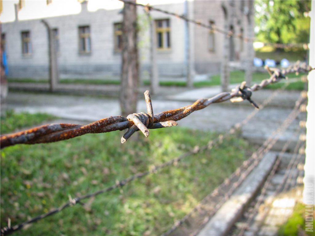 Освенцим. Колючая проволока концлагеря Аушвиц I.