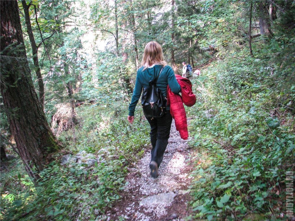 Спуск со средней станции по горной тропе через лес