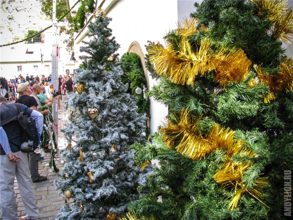 Рождественские елки в сентябре