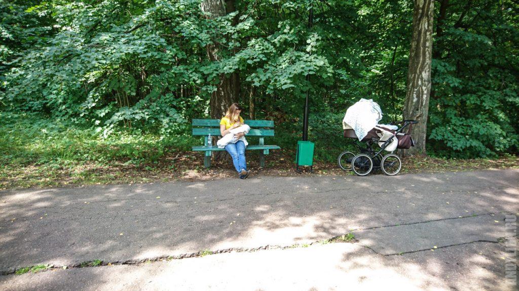 Новая жизнь с коляской и Полей
