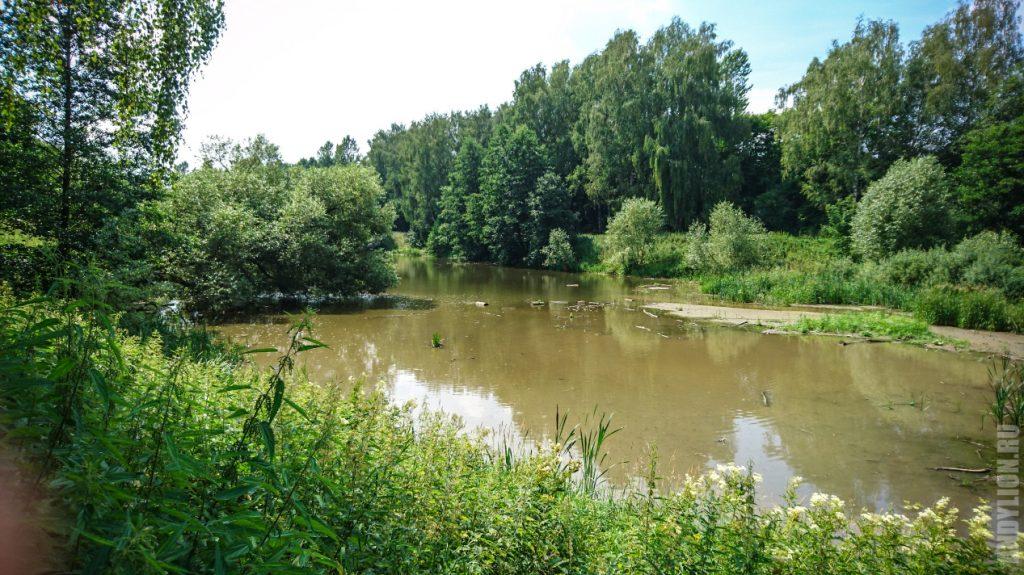 Большой пруд в Горках Ленинских