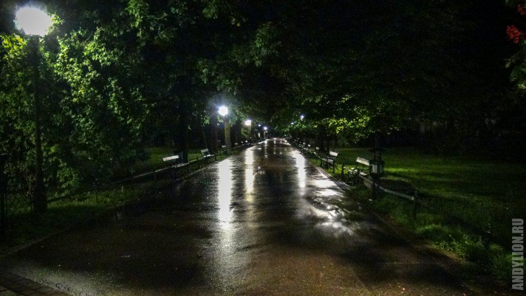 Аллея в парке Краковские Планты
