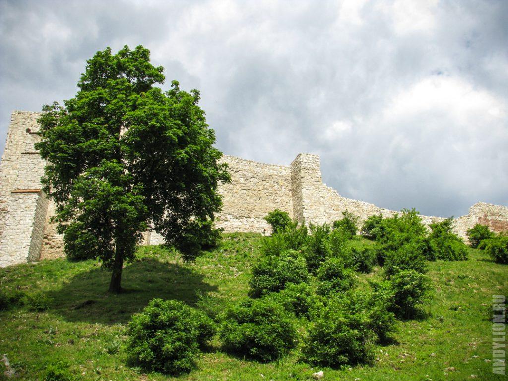 Развалины Королевского замка