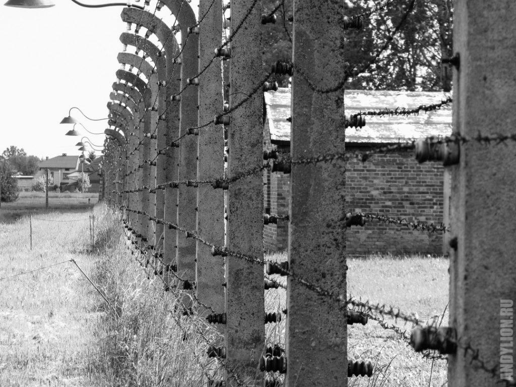 Забор из колючей проволоки в Биркенау