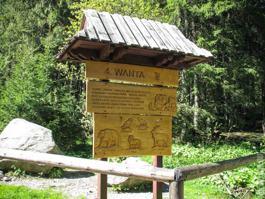 Точка 4. Wanta. Камень большого диаметра.