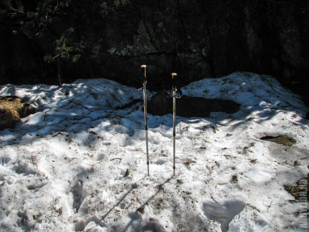 Снег и палки