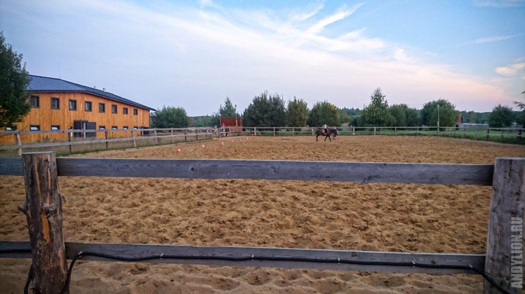Паддок для выгула лошадей