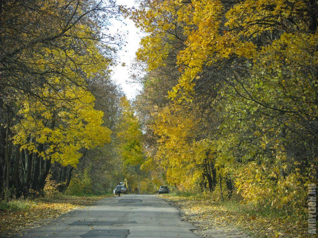 Дорога на базу отдыха ОТЭК Таруса
