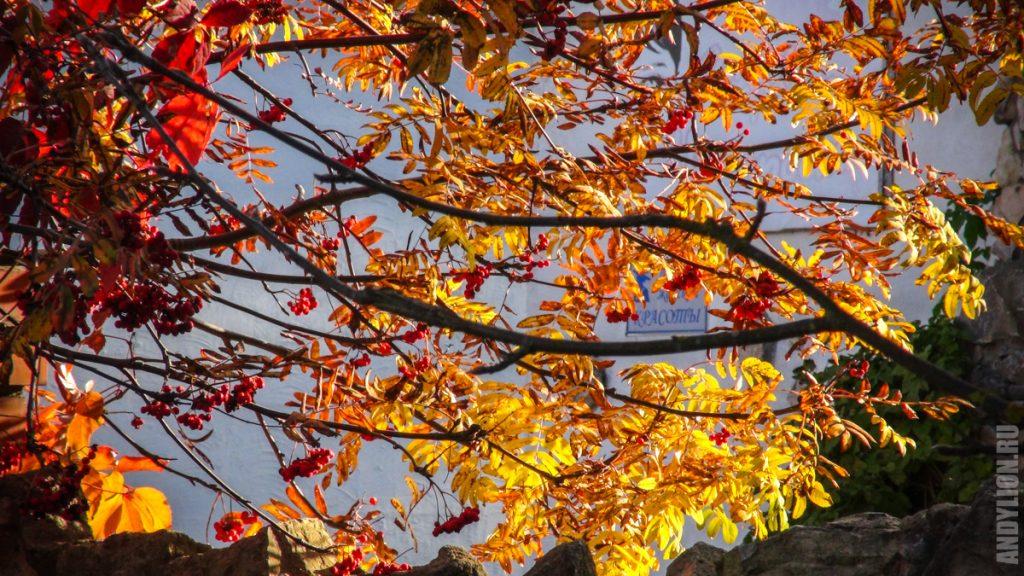 Осенние краски Тарусы