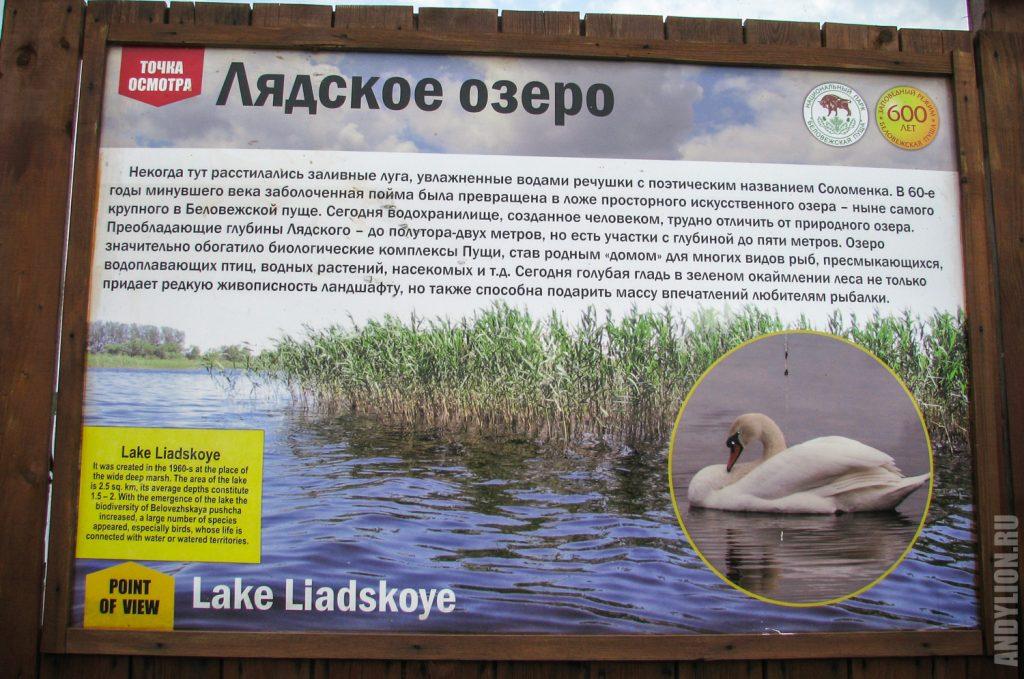 Лядское озеро