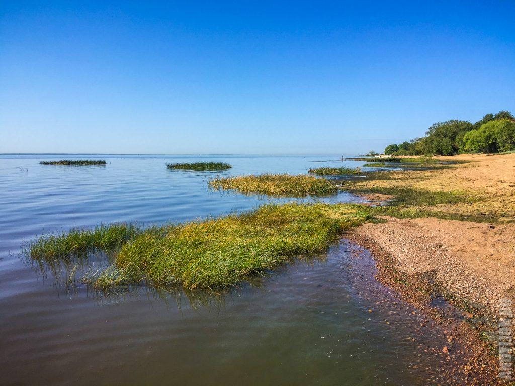 Море и пляж. Финский залив.