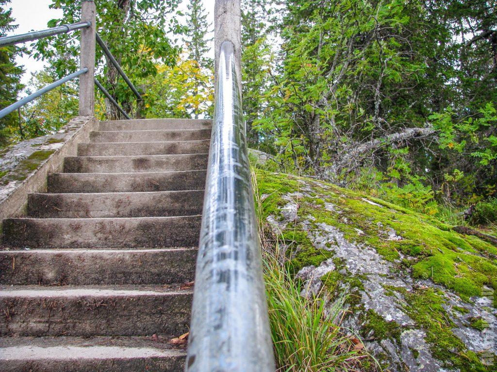Лестница. Национальный парк Коли.