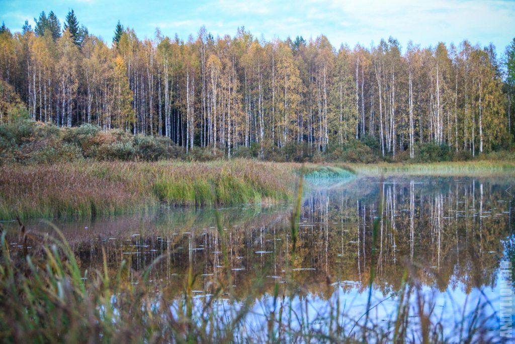 Озеро Липаслампи в Финляндии