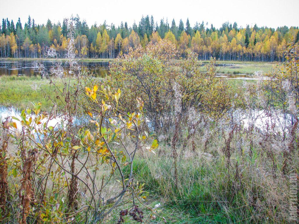 Осенняя Финляндия
