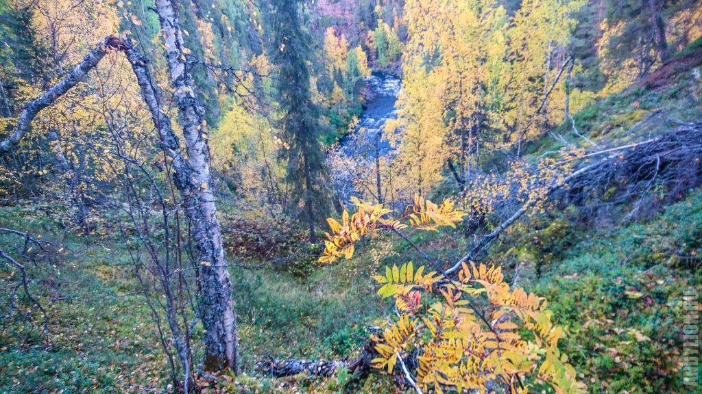 Осень в национальном парке Оуланка