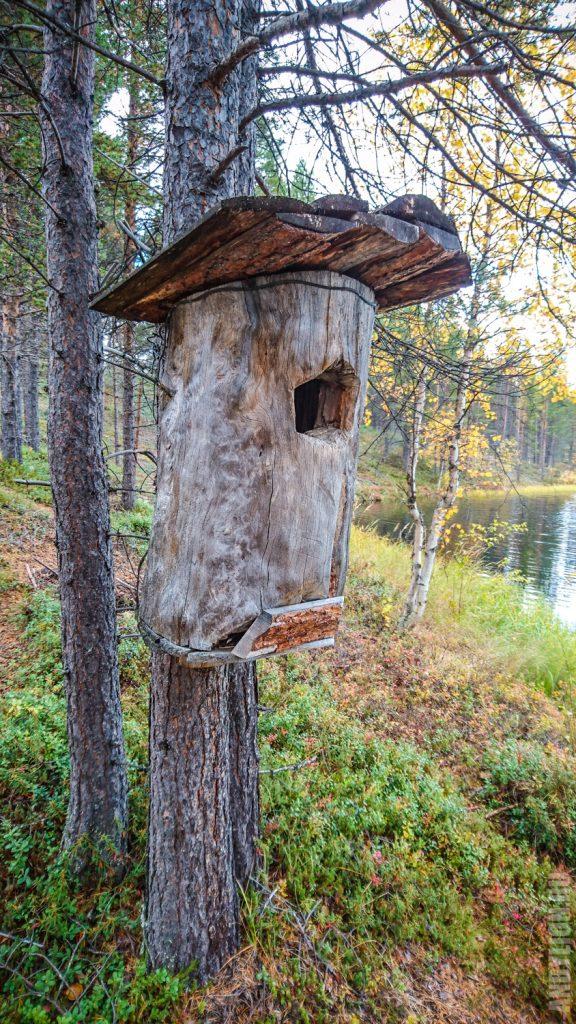 Яйцехранилище-инкубатор у саамов