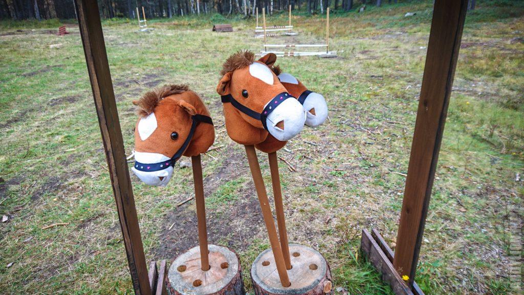 Конкур в музее SIIDA Инари Финляндия