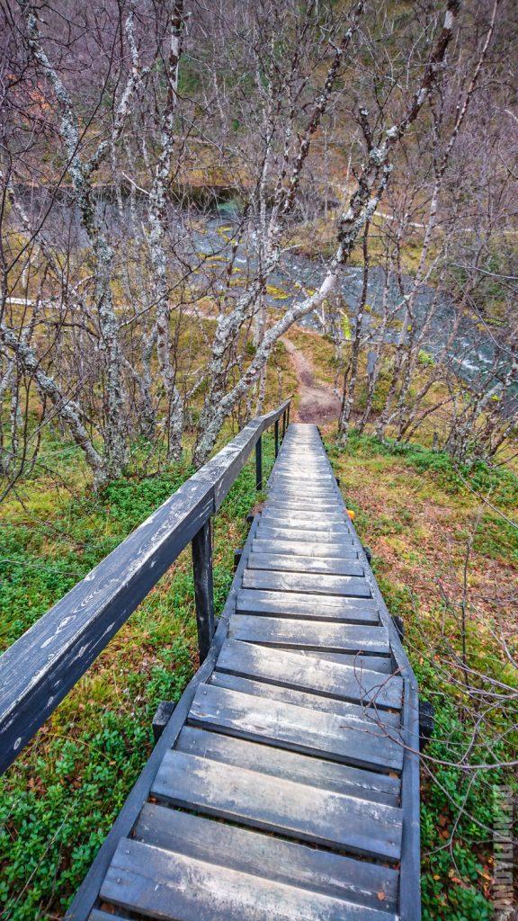 Тропа в заповеднике Кево Финляндия