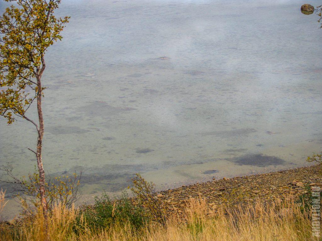 Прозрачная вода в Порсангер-фьорде