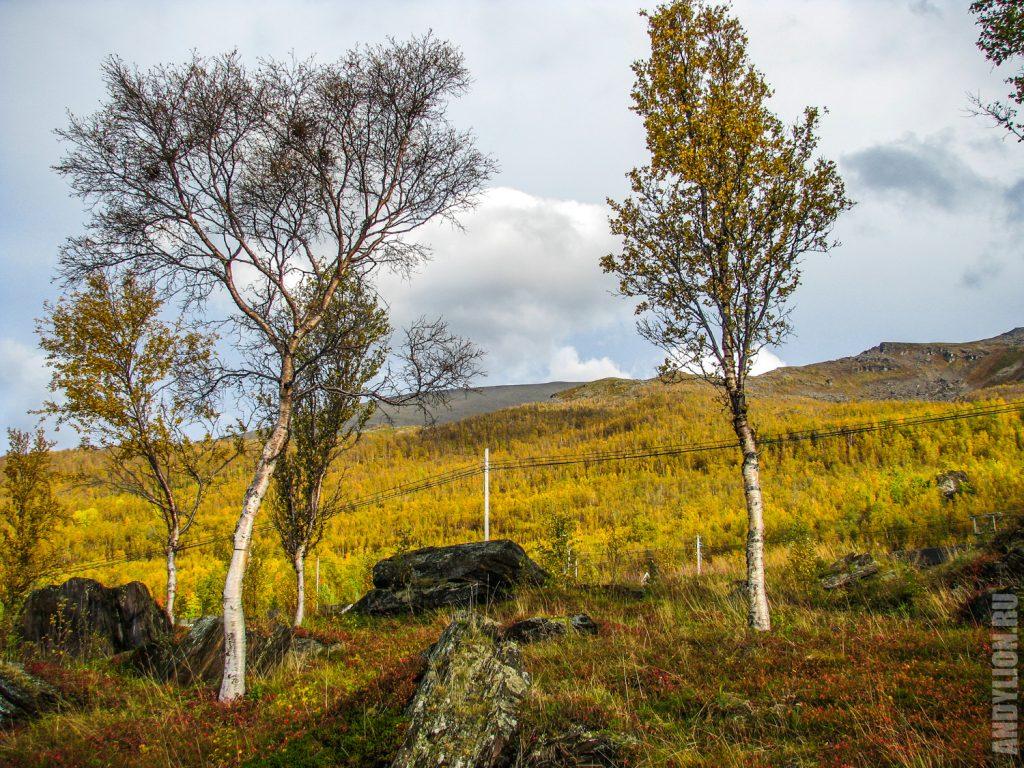 Осеннией пейзажии Норвегии