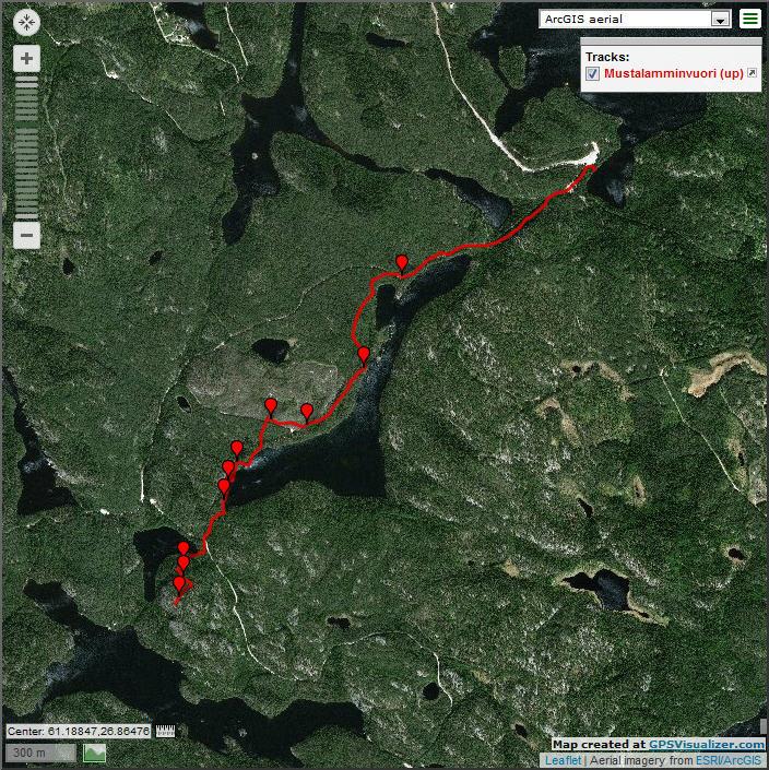 Трек от Saarijärvi до вышки Mustalamminvuori со спутника