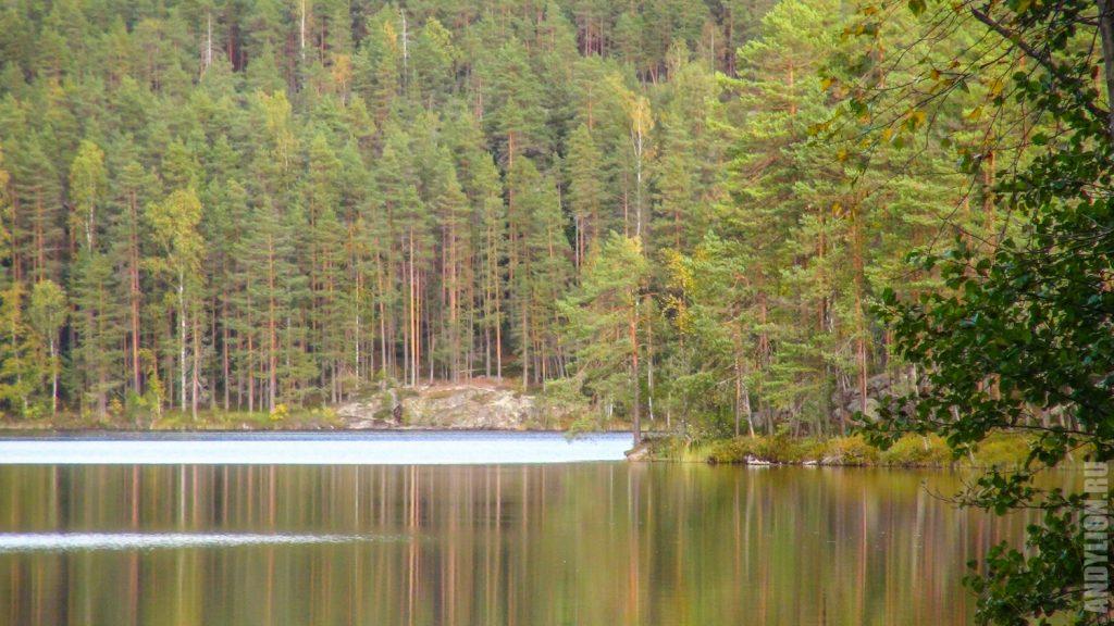Озеро Valkjärvi в национальном парке Реповеси