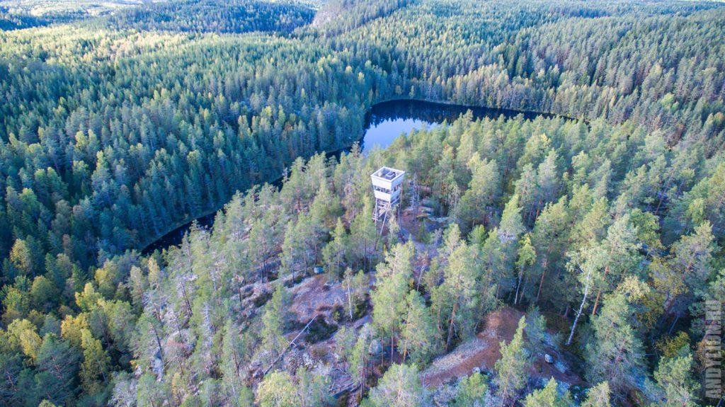 Национальный парк Реповеси с квадрокоптера